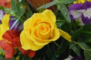 corporate floral display